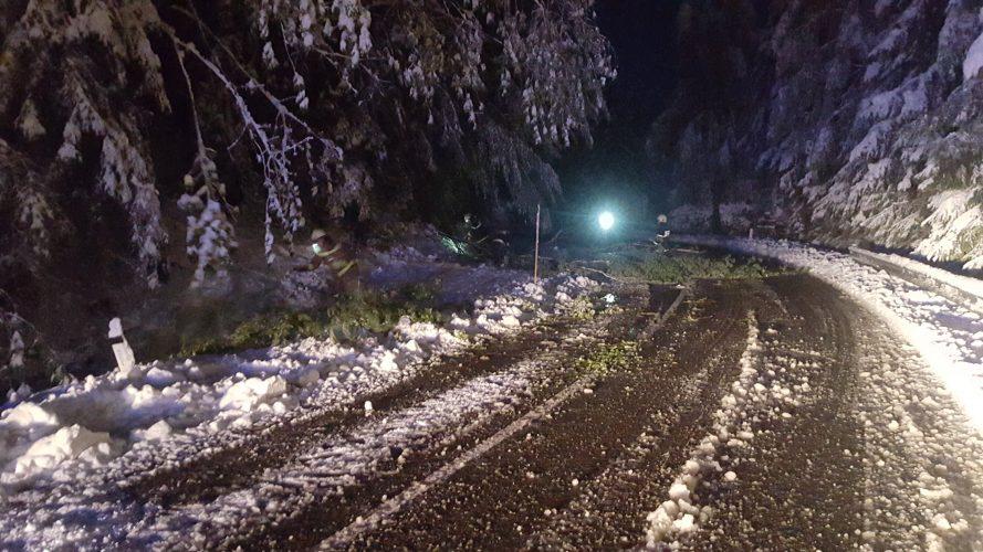 27.4.2016-Snegolom